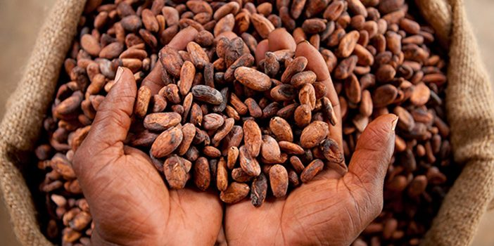 Ghana Cocoa Tour Package